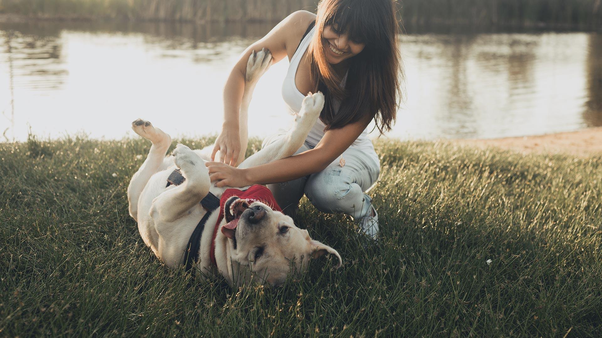 Tierfreunde - Vegan
