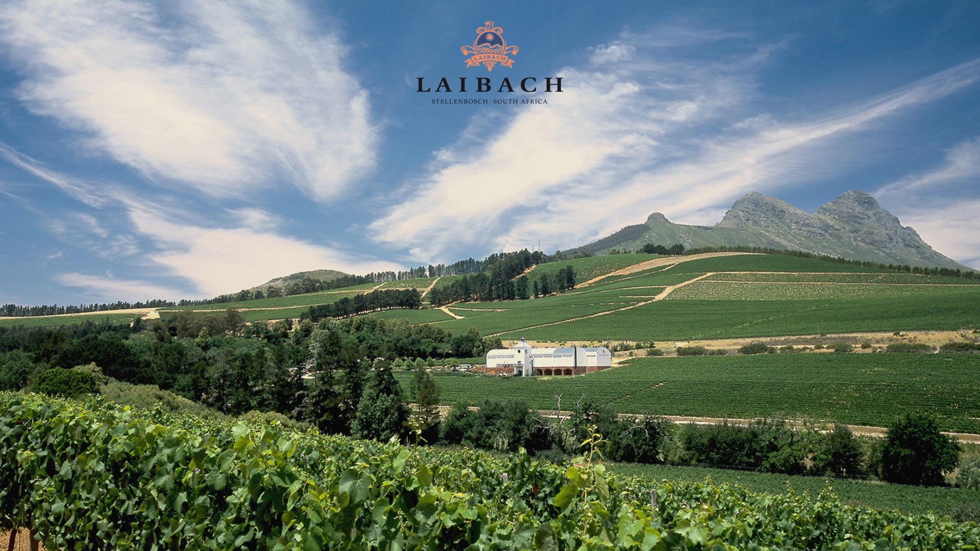 Laibach Vineyards